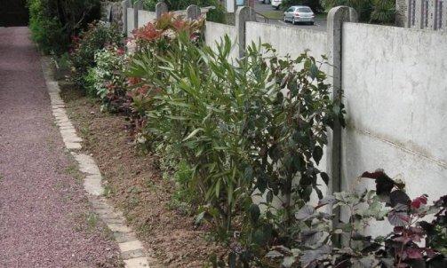 Aménagement de jardin à Granville